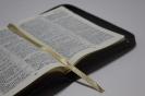 Новые Библии 2016_3