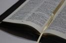 Новые Библии 2016_4