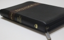 Новые Библии 2016_6